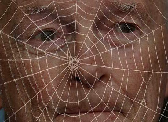 What a Web Theodore McCarrick Weaved